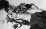 Ahmad Kasravi Death